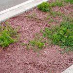 piedras-segovia-jardineria-escarcha-pizarra-roja-4