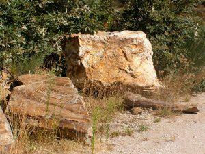 piedras-segovia-jardineria-monolitos-dorado-5