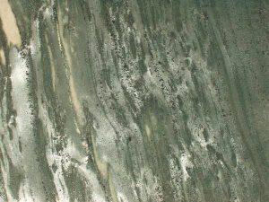 piedras-segovia-piedra-regular-filita-gris-verdosa-pulida-1
