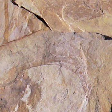 Piedras Segovia - Piedras irregulares: Cuarcita amarilla